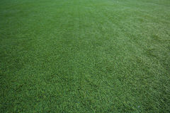 Background artificial turf green grass Royalty Free Stock Photos