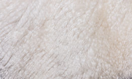 Background of artificial wool Stock Photos