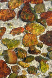 Background as colorful stone in clear water. Colorful stone in clear water at seaside, shown as color, shape and texture, as featured background and detail Stock Photography