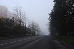 Background autumn fog on city road Stock Image