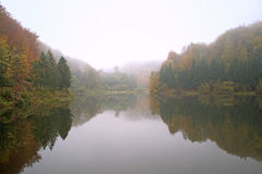 Background of an autumn fog on the lake Royalty Free Stock Photo