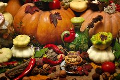 Background autumn harvest stock images