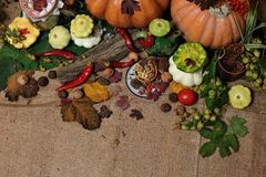 Background autumn harvest Royalty Free Stock Photos