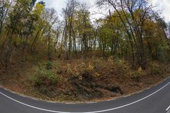 Autumn landscape along a road. Background with autumn landscape along a road Royalty Free Stock Images