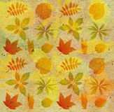 Background with autumn leaf Royalty Free Stock Images