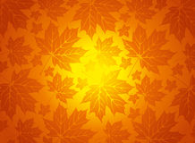 Background with autumn leaves Stock Photography