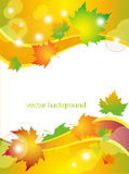 Background with autumn leaves. Vector drawing with autumn leaves Royalty Free Stock Photography