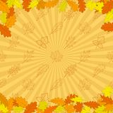 Background, autumn leaves Royalty Free Stock Photos