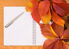 Background from the autumn leaves Stock Photos