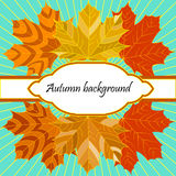 Background with autumn leaves and decorative place for text Royalty Free Stock Photography