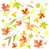 Background with autumn leaves Royalty Free Stock Photos
