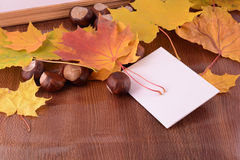 Background with autumn leaves and empty paper frame Royalty Free Stock Images
