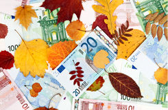 Background from autumn leaves and the euro. Banknotes Royalty Free Stock Images