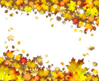 Background of  autumn leaves. Background of falling autumn leaves Royalty Free Stock Photos