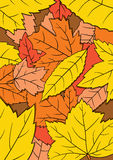 Background autumn leaves vector. Flat cartoon background autumn leaves Royalty Free Stock Images