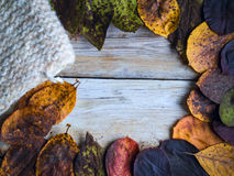 Background with autumn leaves and knitwork. Background with wooden planks, autumn leaves and knitwork Stock Photo