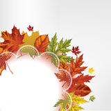 Background with autumn leaves and lace, hand-drawi Royalty Free Stock Photos