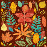 Background of autumn leaves  Royalty Free Stock Image
