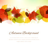 Background with Autumn Leaves at the Top and Copy Space at the B Royalty Free Stock Image