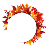 Background with autumn leaves. Vector eps-10. Royalty Free Stock Images