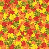 Background autumn maple leaves. Illustration stock illustration