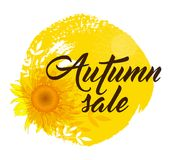 Background for autumn sale. With yellow sunflower. `Autumn sale` lettering Stock Image