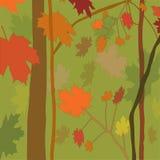 Background autumn wood Stock Image
