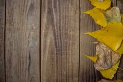 A background autumn yellow leaves on wooden background stock photo