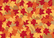 Background of the autumnal leaves. The background of the autumn, bright, colorful leaves of maple and elm Stock Photography