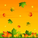 Background with autumnal leaves. Royalty Free Stock Image