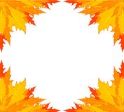 Background with autumnal leaves. Royalty Free Stock Photography