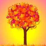 Background with autumnal tree with leaves. Stock Images