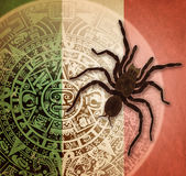 Background with Aztec calendar and tarantula. Background in American Indian Style with Aztec calendar, Mexican flag and big spider Royalty Free Stock Images