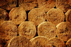 Background bales of hay Stock Images