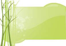 Background bamboo Royalty Free Stock Image