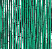 Background with a bamboo. Bamboo branches, stalks Stock Photos