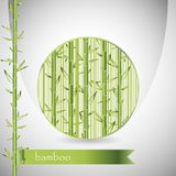 Background with bamboo in circle and green ribbon Royalty Free Stock Photo