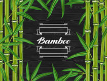Background with bamboo plants and leaves. Stock Images