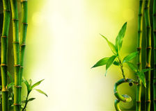 Background with bamboo for spa treatment Stock Photos
