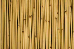 Background of bamboo sticks Stock Photos