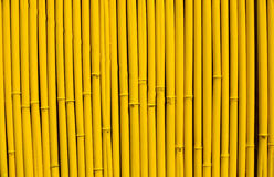 Background of bamboo Stock Image