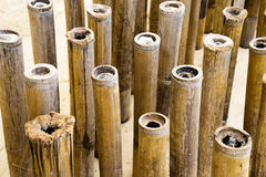 Background of bamboo Royalty Free Stock Photo
