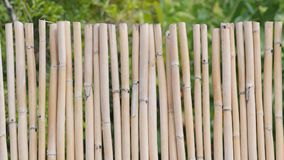 Background of a bamboo fence Stock Photos