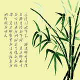 Background with bamboo watercolor and Chinese hieroglyphs. vector illustration