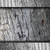 Background bark tree wall grunge fabric abstract Royalty Free Stock Images