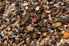 Bright small wet stones background Stock Image