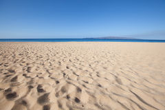 Background beach. Ocean and sea in maui hawaII Stock Images
