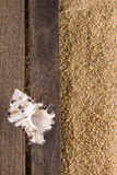 Background with beach sand Stock Image
