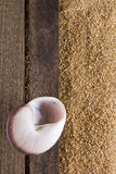 Background with beach sand Royalty Free Stock Photos