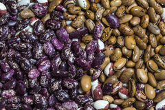 Background bean seeds Stock Photo